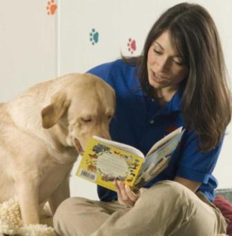 Consejos Útiles para Adoptar una Mascota
