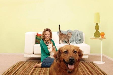 Beneficios y Cuidados al traer una Mascota a Casa