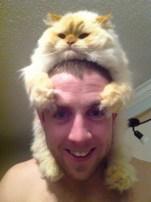 gato com 03