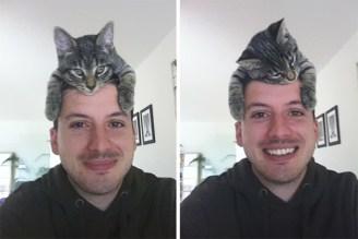gato tierno 01