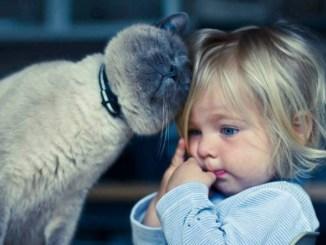 A qué Niño no le gusta tener una Mascota
