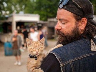 Un motociclista rescata a un gatito y lo lleva de viaje con él