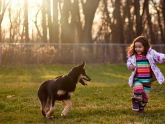 Cómo enseñar a los niños el cuidado de las mascotas