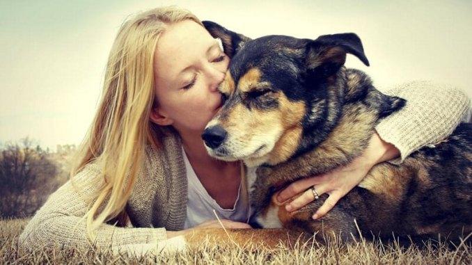 El amor hacia las mascotas es igual al que sentimos por personas: estudio