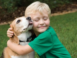 Los beneficios de tener una mascota para los niños