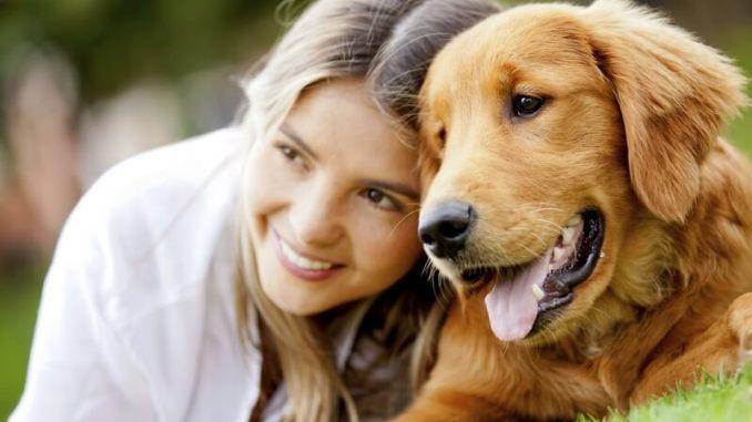 Errores más comunes con las mascotas
