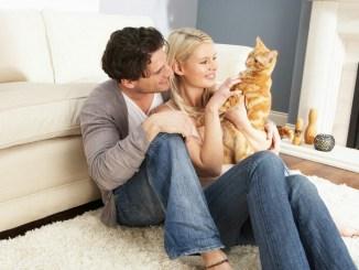 Las mascotas pueden ser un gran beneficio para la pareja