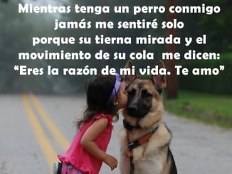 Frases Lindas para mi Perro
