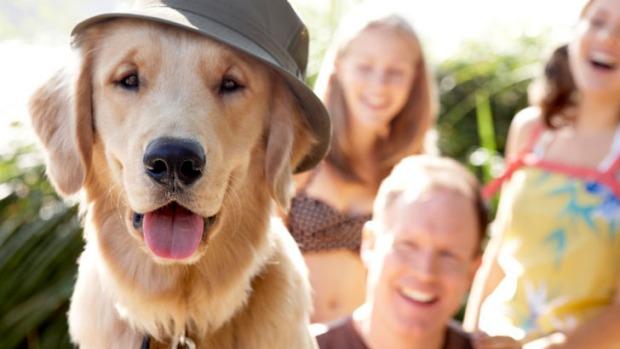 Porque el amor por un perro mantiene a la familia unida