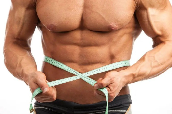 how to shred body fat