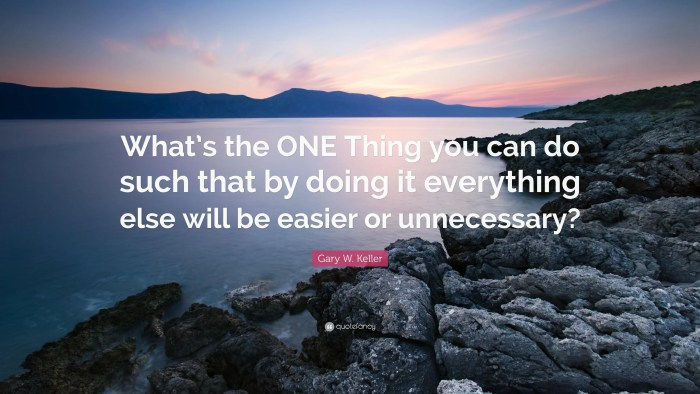 the one thing book gary keller
