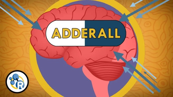 modafinil dosage best modafinil dose