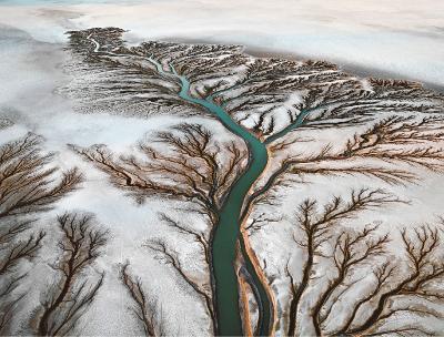 Edward Buntynsky - Watermark