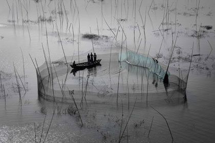 Rete da pesca nella regione di Dacca Bangladesh  23° 43' N - 90° 20' E © Yann Arthus-Bertrand