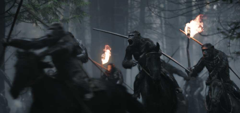 Un'immagine di The War - Il Pianeta delle Scimmie - Photo: courtesy of 20th Century Fox Italia