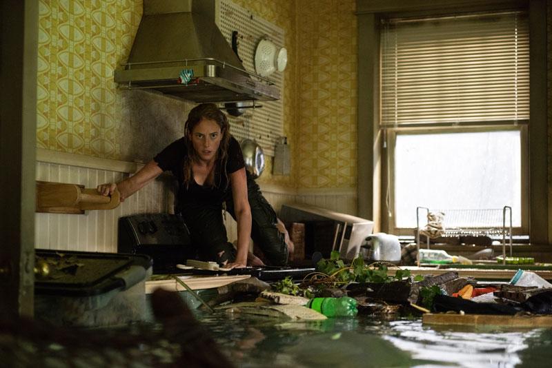Una scena del film Crawl - Intrappolati. Photo: courtesy of 20th Century Fox