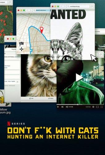 Giù le mani dai gatti poster