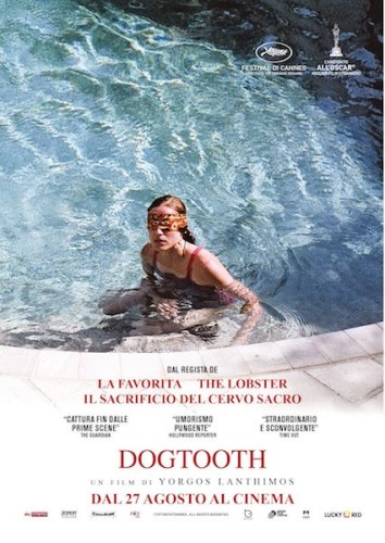 dogtooth poster film lucky red
