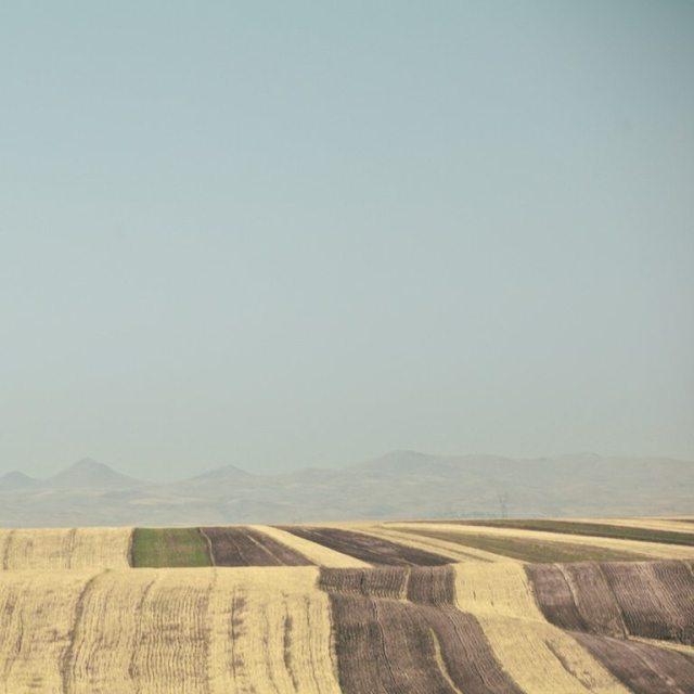 fields of loneliness Hamed Masoumi Tehran 2