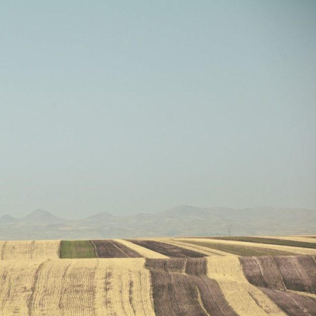 fields of loneliness Hamed Masoumi Tehran 2
