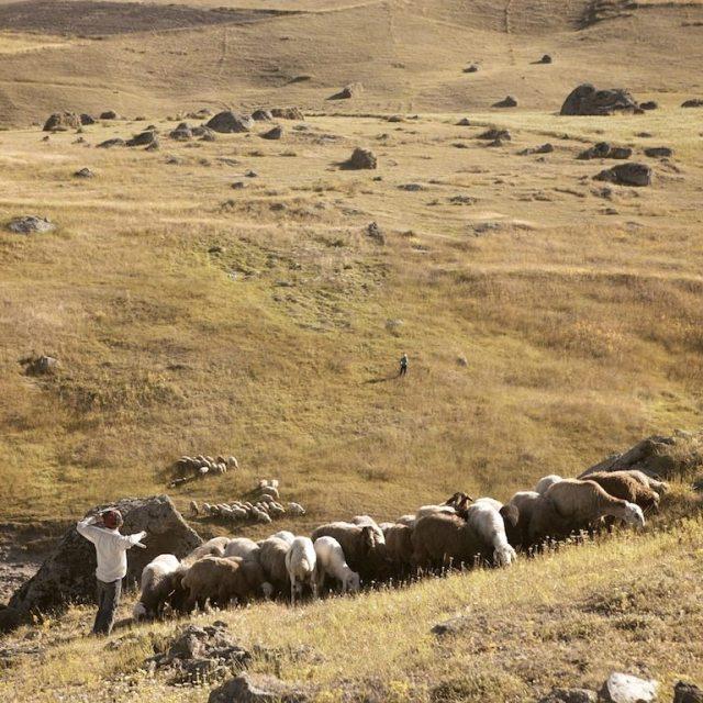fields of loneliness Hamed Masoumi Tehran 6