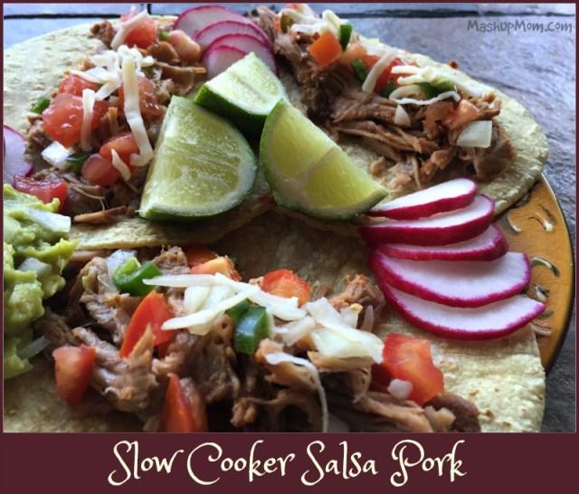slow cooker salsa pork