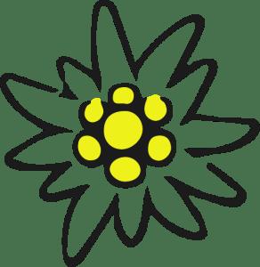 stella-alpina-mas-la-grisota