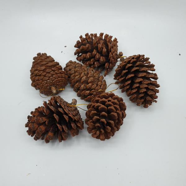Pine Cones by Masons Home Decor