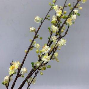 White Plum Blossom by Masons Home Decor