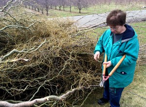Leslie Cooper cleans up damage in her Summit Twp. yard.