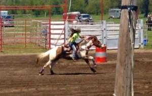 fair_rodeo_2