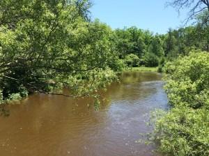 pere marquette river upper branch