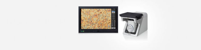 DSX510i Inverted Advanced digital microscope