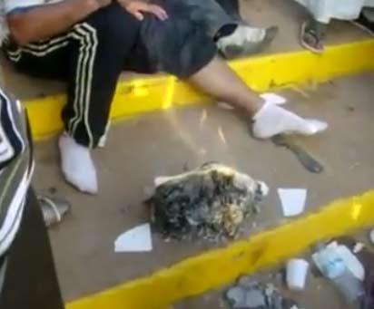 بالفيديو..الجزائريين حرقوا الكتاب المقدس ووصفوا المصريين باليهود في السودان