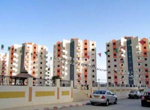 مشاريع بايدي المصريين في الجزائر