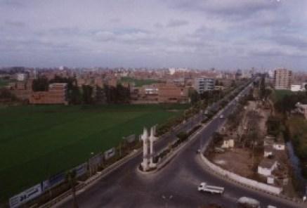 نتائج كلية التجارة جامعة المنصورة 2019
