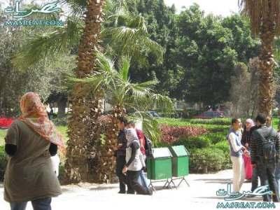 نتائج كليات البنات جامعة عين شمس 2019