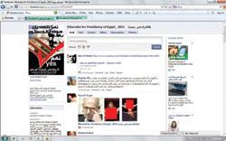 نشر صور اباحية على موقع محمد البرادعي