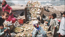 القمامة في مصر اغلى زبالة بالعالم