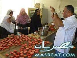 اسعار الطماطم في مصر اليوم