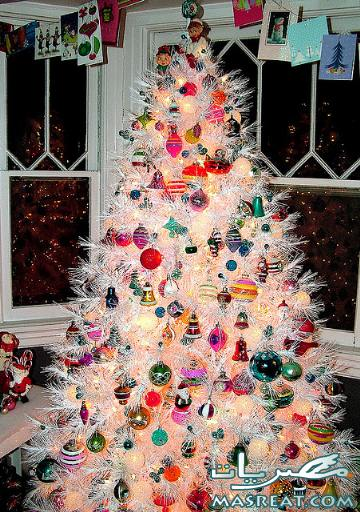 صور شجرة عيد الميلاد منزلية