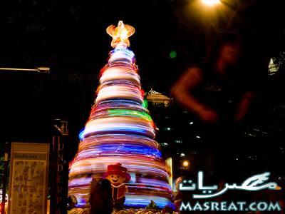 صور زينة شجرة عيد الميلاد