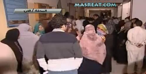 نتائج الاستفتاء على الدستور - نتيجة الفرز النهائية مباشر مصر الان