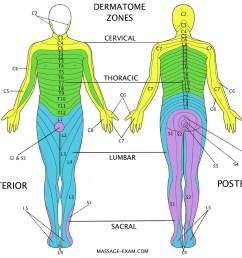 diagram of massage [ 1238 x 1033 Pixel ]