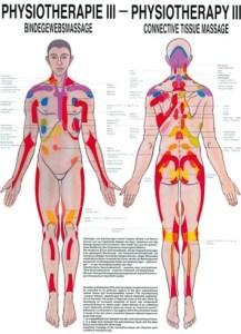 Spinale Segment Therapie - Bindweefsel Periost massage
