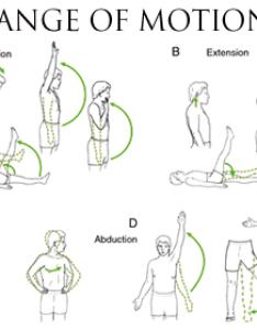 Rangeofmotiong also range of motion rh massagetherapyreference