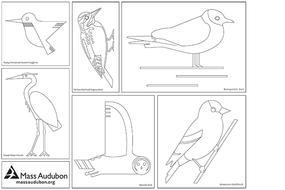 Bird-at-home-a-thon 2020 Official Activities List