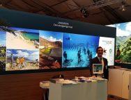 Turismo Lanzarote refuerza la incipiente recuperación del mercado alemán concentrando acciones específicas con dos de sus principales operadores