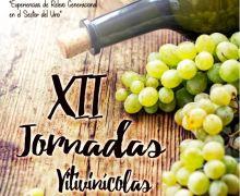 Una mesa redonda sobre el relevo generacional en el sector clausurará las 'XII Jornadas Vitivinícolas' organizadas por el Cabildo de Lanzarote