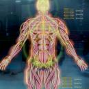 Frontkämpfer-Klasse in Mass Effect 1